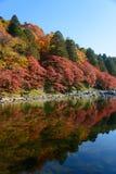 Autumn foliage in Korankei, Aichi, Japan Stock Photos