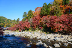 Autumn foliage in Korankei, Aichi, Japan Stock Image