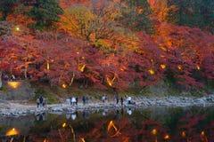 Autumn foliage in Korankei, Aichi, Japan Stock Photography