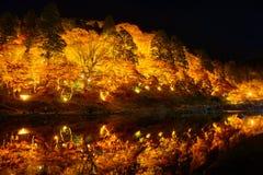 Autumn foliage in Korankei, Aichi, Japan Stock Image