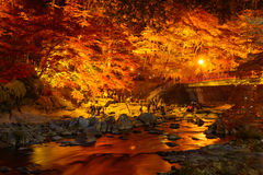 Autumn foliage in Korankei, Aichi, Japan Stock Photos
