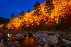 Autumn foliage in Korankei, Aichi, Japan Stock Photography