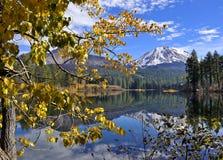 Autumn Foliage and Lassen Peak, Lassen Volcanic National Park. Yellow Autumn Foliage, Manzanita Lake and Lassen Peak, Lassen Volcanic National Park Stock Photos