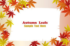 Autumn foliage leafs frame Royalty Free Stock Photography