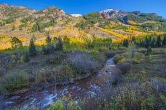 Autumn Foliage Maroon Creek near Maroon Bells Royalty Free Stock Photos