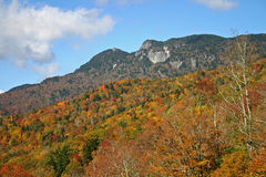 Autumn Foliage on the Mountainside. Colorful autumn foliage covers the mountainside below granite cliffs Royalty Free Stock Images