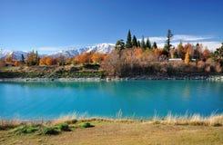 Autumn Foliage in New Zealand, Lake Tekapo stock photos