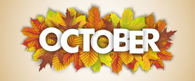 Autumn Foliage October Header stock abbildung