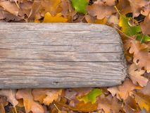 Autumn foliage and the old Board. Background Stock Photos