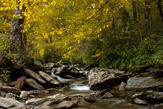 Autumn foliage over Little Pigeon River Stock Photography
