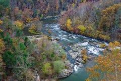 Autumn Foliage på den Roanoke floden Arkivfoto