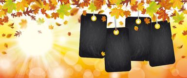 Autumn Foliage Price Stickers Header Sunbeam. Autumn foliage with black price stickers, sunlights and bokeh Stock Image