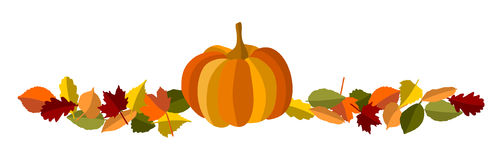 Autumn foliage and pumpkin Stock Image