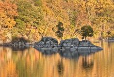 Autumn Foliage Reflected colorido en agua Imágenes de archivo libres de regalías