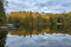 Autumn Foliage Reflecting in a Lake - Ontario, Canada Royalty Free Stock Photo