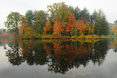 Autumn Foliage Reflection Stock Photography