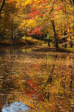 Autumn Foliage Reflection. In water Royalty Free Stock Photography