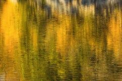 Autumn Foliage Reflection coloré Photographie stock libre de droits