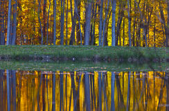 Autumn foliage reflection in lake Stock Image