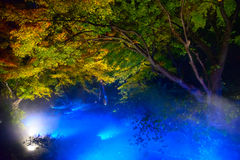 Autumn foliage in Rikugien Garden, Komagome, Tokyo. Rikugien is often considered Tokyo's most beautiful Japanese landscape garden. Built around 1700 for the 5th Royalty Free Stock Image