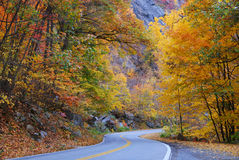 Autumn foliage road Stock Photos