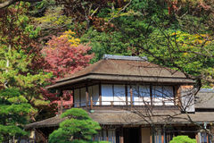 Autumn foliage in the Sankeien Garden, Yokohama, Kanagawa, Japan Royalty Free Stock Images