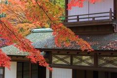 Autumn foliage in the Sankeien Garden, Yokohama, Kanagawa, Japan Royalty Free Stock Image