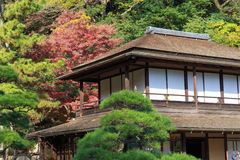 Autumn foliage in the Sankeien Garden, Yokohama, Kanagawa, Japan Stock Photo
