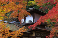 Autumn foliage in the Sankeien Garden, Yokohama, Kanagawa, Japan Stock Photos