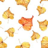 Autumn foliage. Seamless watercolor pattern. Hand-drawing stock images
