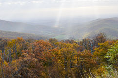 Autumn foliage in Shenandoah National Park - Virginia United States. Autumn foliage with misty sky in Shenandoah National Park - Virginia United States stock images