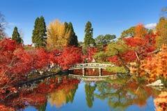 Autumn foliage at the stone bridge in Eikando Temple, Kyoto, Royalty Free Stock Image