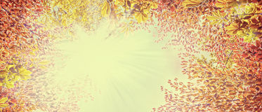 Autumn  foliage on sunny sky ,abstract nature background, banner for website. Toned Royalty Free Stock Images