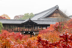 Autumn foliage in Tofukuji Temple Royalty Free Stock Photo