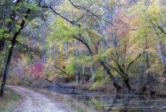 Autumn Foliage By Trail colorido Foto de archivo