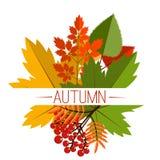 Autumn foliage vector banner. Autumn typographical Royalty Free Stock Photo