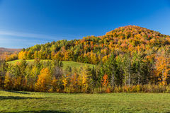 Autumn foliage in Vermont countryside Royalty Free Stock Photography