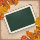 Autumn Foliage Vintage Green Blackboard Royalty Free Stock Photo
