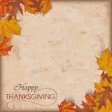 Autumn Foliage Vintage Thanksgiving Stock Photography