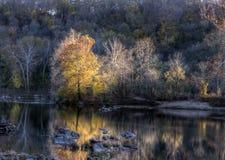 Autumn Foliage By Water coloré Photographie stock libre de droits