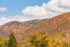 Autumn foliage in White mountain National forest, New  Hampshire Stock Photos