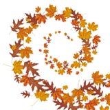 Autumn Foliage Wind Helix Stock Photos