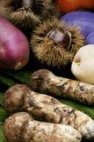 Autumn food Stock Photos