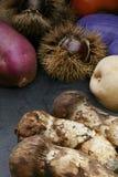 Autumn food Stock Image