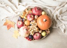 Autumn food concept. Fruits, vegetables and nuts on wooden round Royalty Free Stock Photography