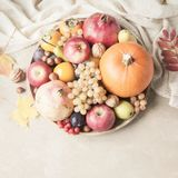 Autumn food concept. Fruits, vegetables and nuts on wooden round Stock Photo
