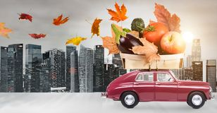 Autumn food delivery Stock Image