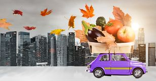 Autumn food delivery Stock Photos
