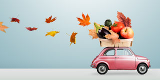 Autumn food delivery Stock Photography