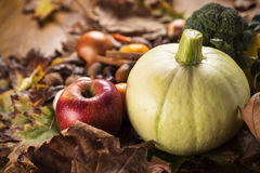 Autumn food mix Royalty Free Stock Image